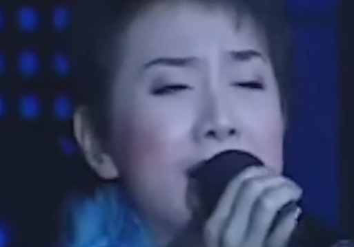全能实力歌手叶云二人传现场(武汉蓝天)